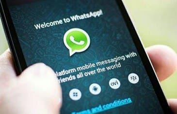 Conviértete en betatester de WhatsApp fácilmente