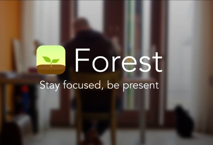 forest_website_preview