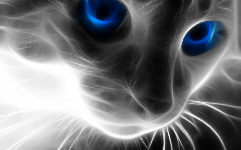 perrosfondos_de_animales_hd_20120119_1657505011