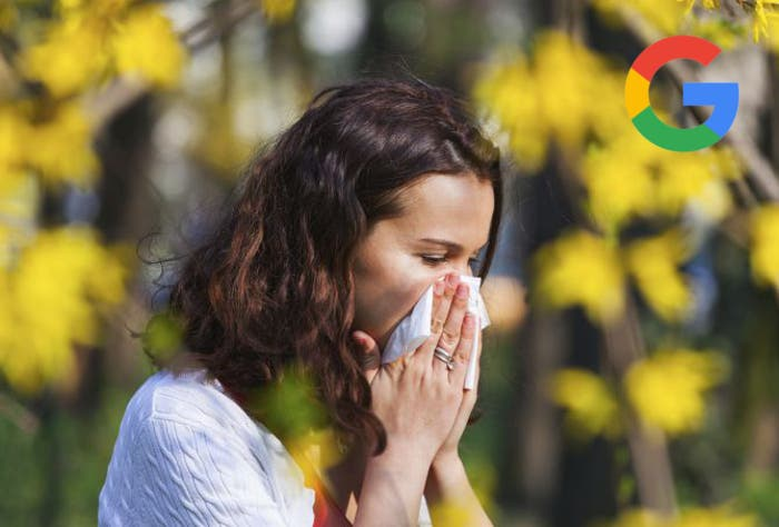 La aplicación de Google se actualiza para mostrarte información sobre el polen