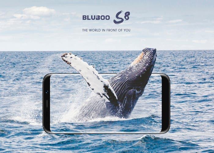 BLUBOO S8, consigue el clon más codiciado al mínimo precio en su preventa