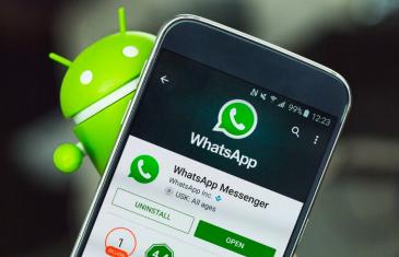 Esta es la función que WhatsApp aprovechará de Android 8 Oreo