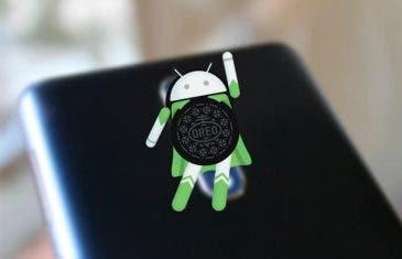 El Nokia 8 tendrá Android 8.0 Oreo antes de acabar el mes de octubre
