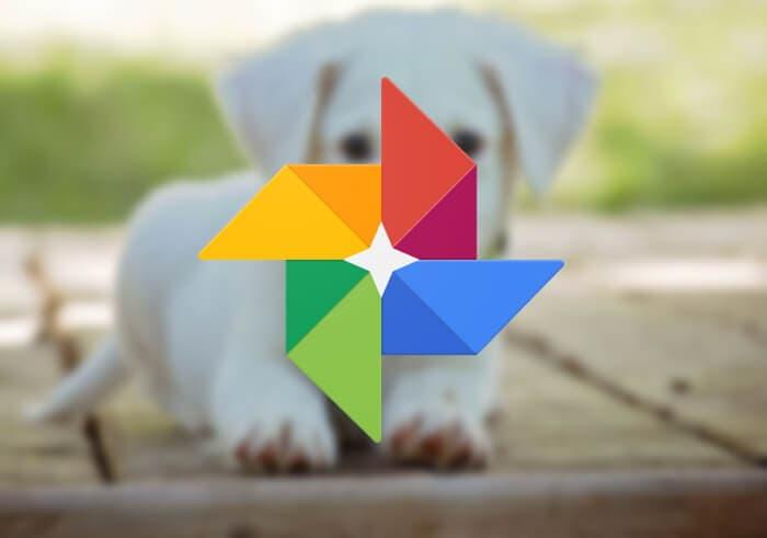 Google Fotos se está preparando identificar a tus mascotas y traer una nueva función de Apple
