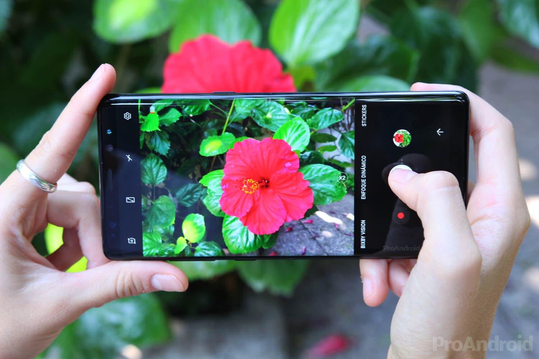 Pantalla AMOLED del Samsung Galaxy Note 8