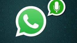 Whatsapp microfono