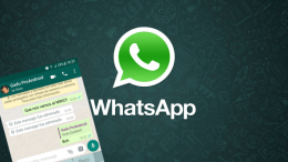 Logo de WhatsApp con captura