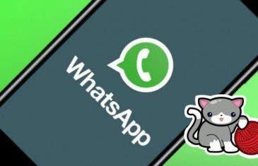 Cómo descargar más stickers de WhatsApp gratis