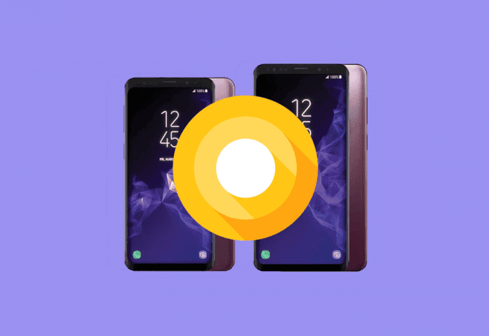 Project Treble en el Samsung Galaxy S9: la primera ROM con Android Stock una semana después