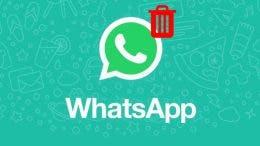 WhatsApp con papelera