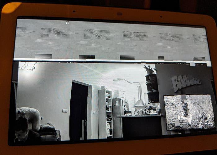 Google desactiva la señal de las cámaras Xiaomi al mostrar casas ajenas