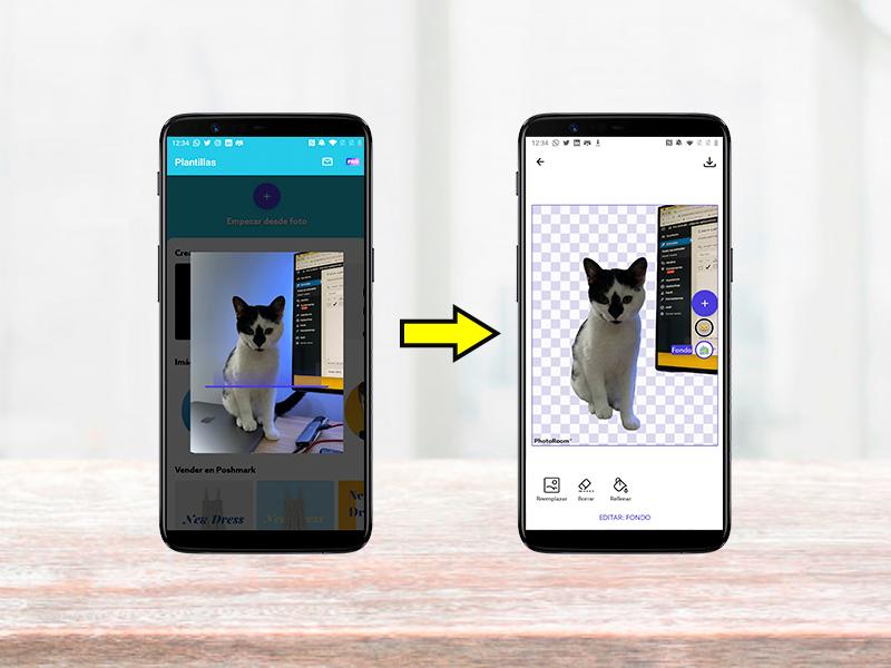 Así de fácil es quitar el fondo de una fotografía con esta aplicación: PhotoRoom