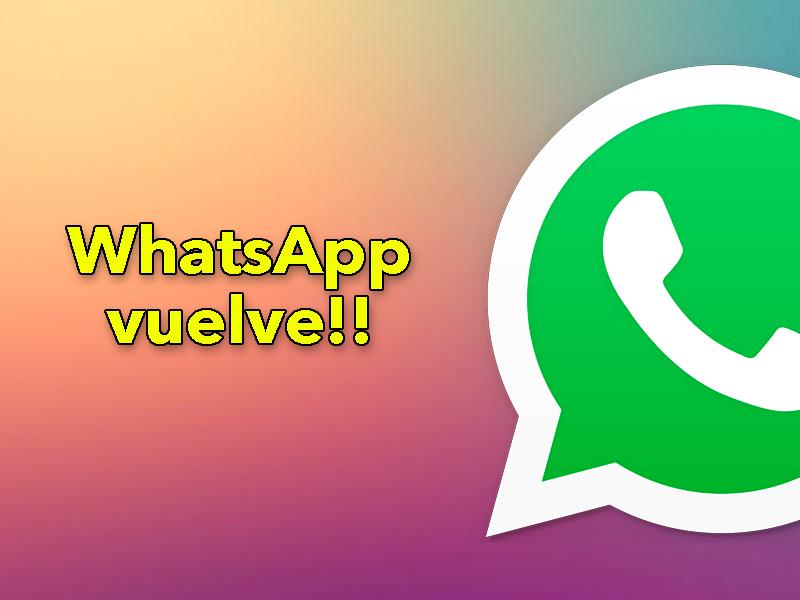 WhatsApp vuelve a la carga: su nueva política de privacidad se implementará el 15 de marzo